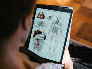 anatomy image on tablet