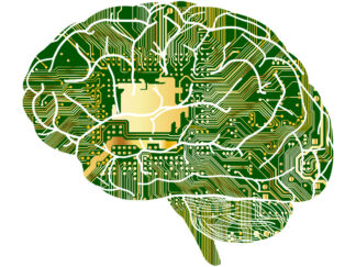 photo of brain